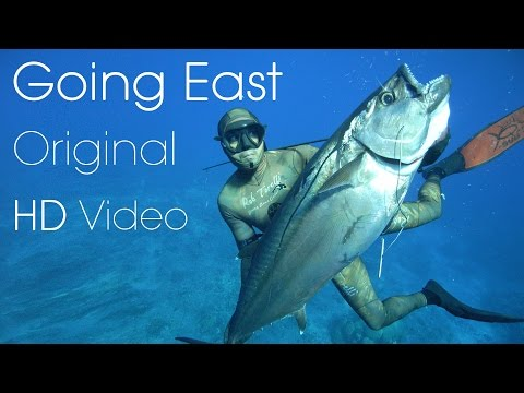 Best Spearfishing Film - One Fish Going East - Original HD