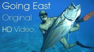 Download Video Best Spearfishing Film - One Fish Going East - Origonal HD MP3 3GP MP4