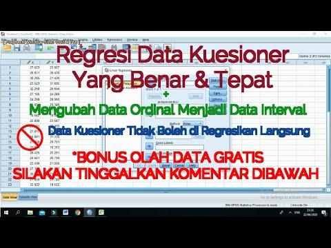 Cara input data dari kuisioner atau angket ke dalam SPSS.