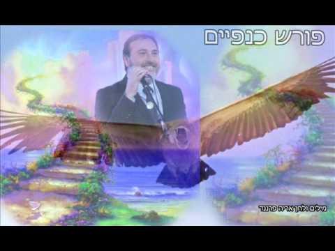 פורש כנפיים בני אלבז