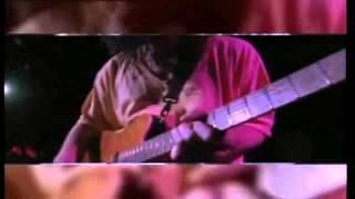 Eddie Van Halen - 316 Guitar Solo (Live 1993)