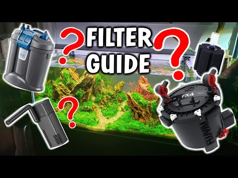 How To Pick The BEST AQUARIUM FILTER For Your Fish Tank!
