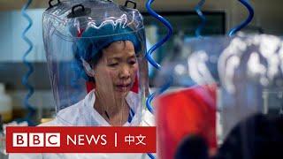 新冠肺炎:BBC記者走訪雲南蝙蝠洞 中國當局設法跟蹤攔截- BBC News 中文 - YouTube