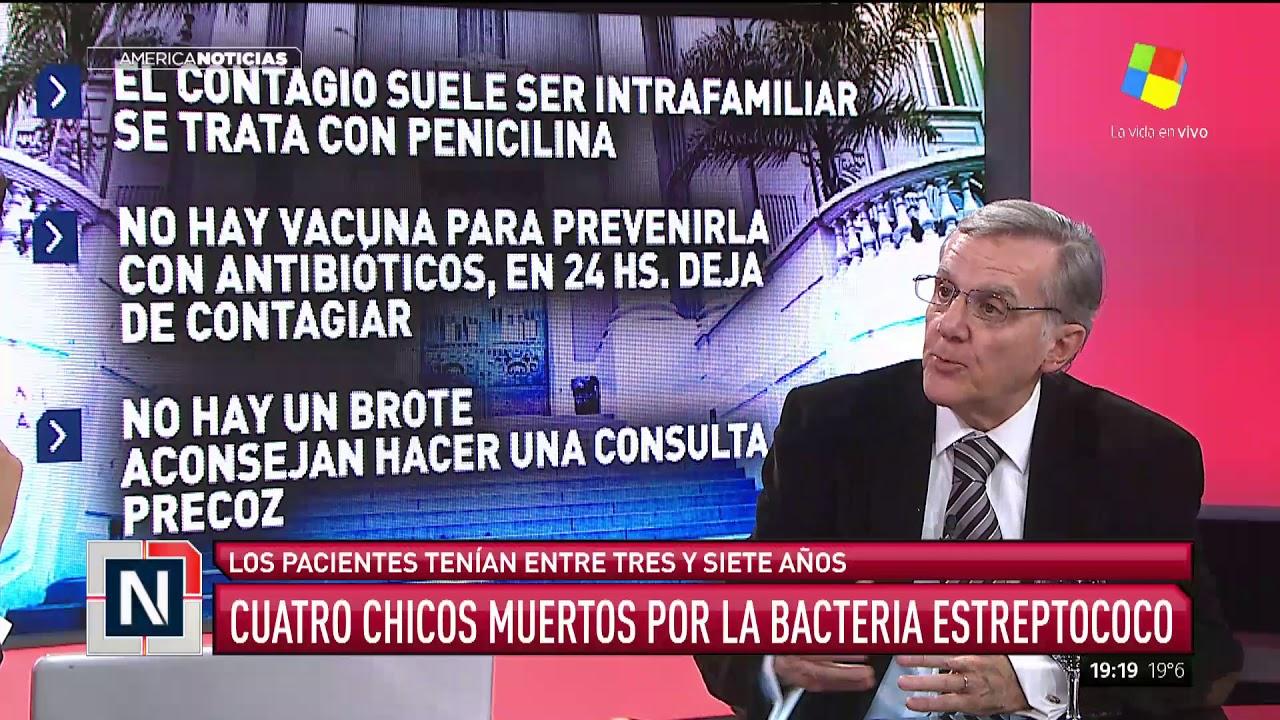 Alerta Por La Bacteria Como Detectar En Los Chicos Los Sintomas