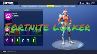 My Fortnite Locker! | 25+ Outfits | 10+ Pickaxes | Christmas Skins!