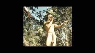 Video How old Dayaknese Make Traditional Hunting Weapon download MP3, 3GP, MP4, WEBM, AVI, FLV September 2018