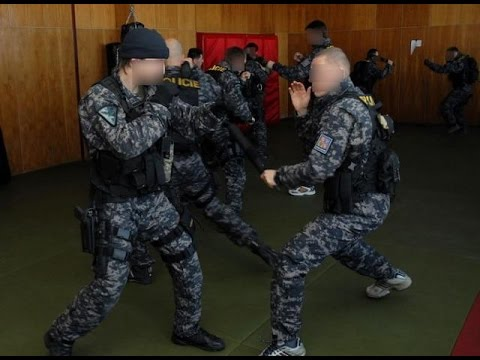 Czech Special Forces-Hand To Hand Combat