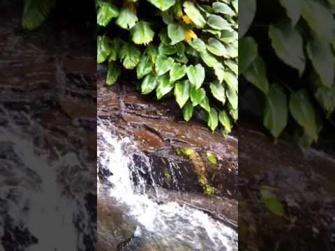 Tinago Mountain Resort, BAGO CITY NEGROS OCCIDENTAL
