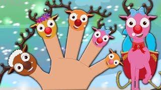 renne famiglia dito | canzone di natale | rima per bambini | Merry Xmas | Reindeer Finger Family