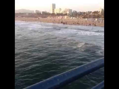 Santa Monica Pier in action
