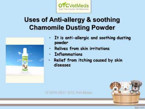 Anti – allergy tablets & Powder