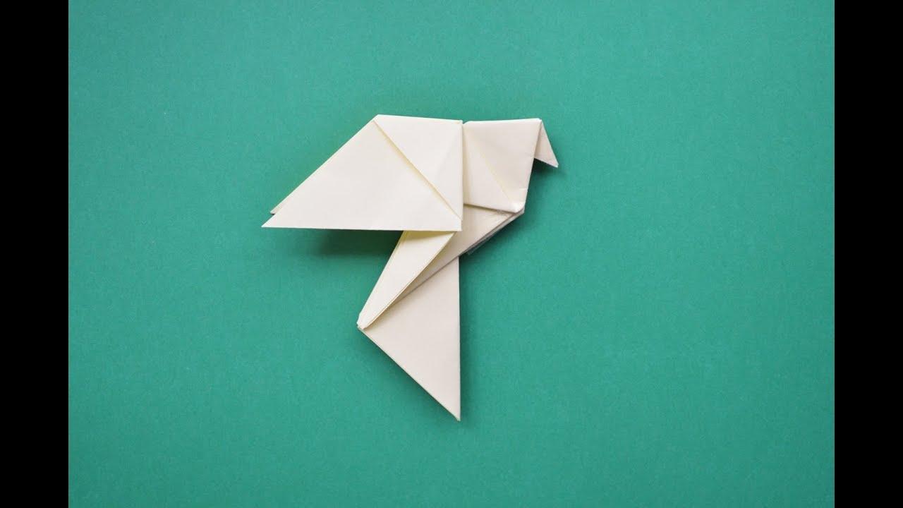 Como hacer una paloma de papel youtube for Como hacer una pileta de fibra
