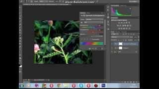 Видеоурок по работе в фотошопе cs6(Как сделать изображение яркими красочным)