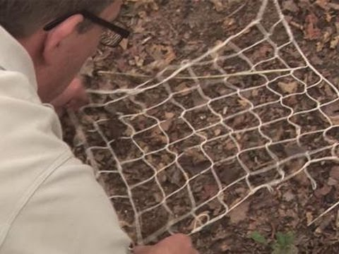 How to Build a Fishing Net