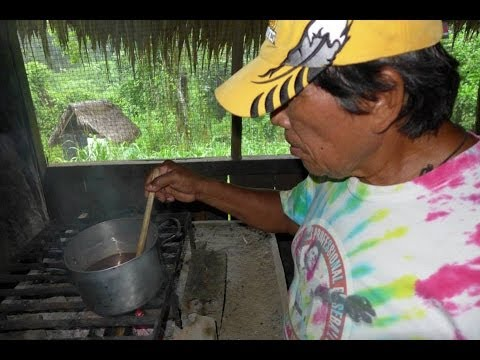 Journey to the Amazon - Jungle Medicine