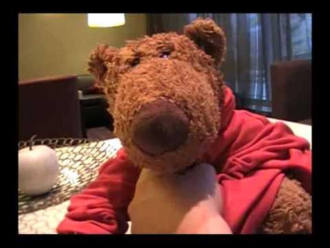 Big Butt Bear EPIC elevator adventure part 2