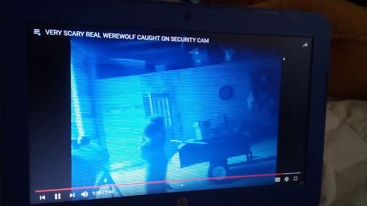Download Top 3 werewolves caught on camera! Real or fake?