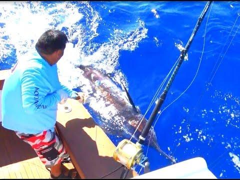 Kona Hawaii With Ihu Nui Sportfishing Charters