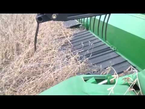 Why We Cut Soybeans On An Angle