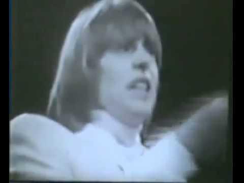 The Yardbirds Over,Under,Sideways,Down