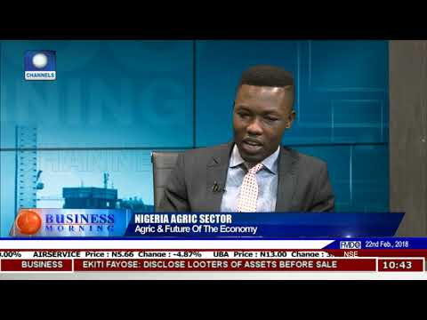 Analyst Advocates More Investment In Agric Sector Pt.2 |Business Morning|