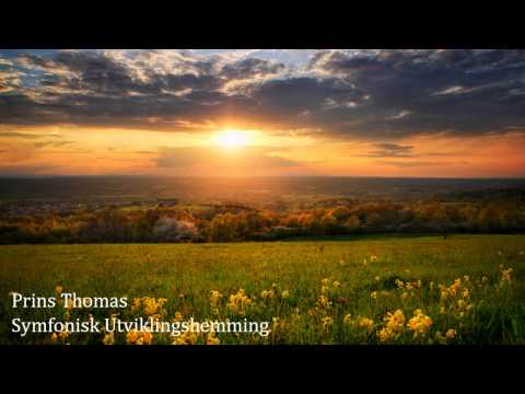Prins Thomas - Symfonisk Utviklingshemming (Original Mix)