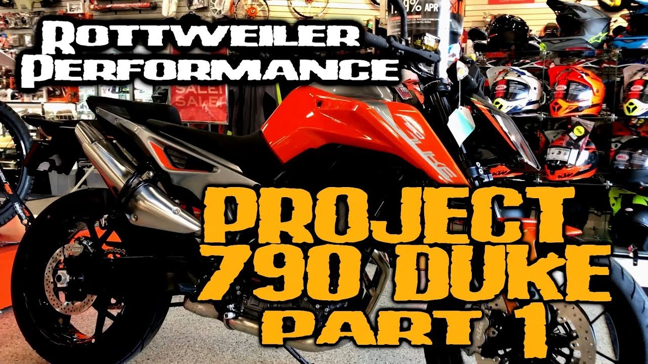 Rottweiler Performance 790 Duke Project Part 1 Youtube