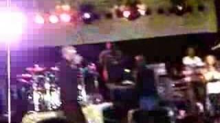 MAD MAD WORLD- Collie Buddz an Shaggy