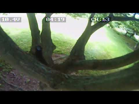 8/19/2017 eachine racer 250 screen recorder Patsy T Mink park 2