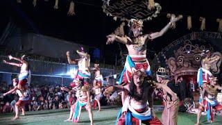 SORENG TOP KELAS INTERNASIONAL karya budaya bandung rejo NGABLAK MAGELANG