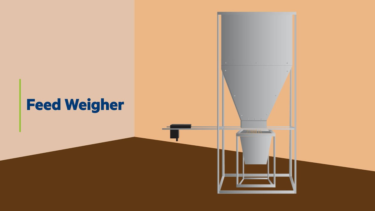 Feed Management   Feed Weigher