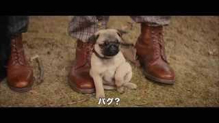 映画『キングスマン』大ヒット上映中! www.kingsman-movie.jp 全世界4...