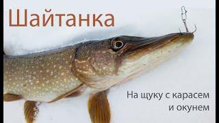 Шайтанка 2021 Рыбалка на щуку живец карась и окунь
