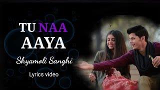 TU NAA AAYA Shyamoli sanghi | lyrics & audio