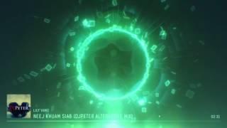 Lily Vang - Neej Khuam Siab (DJPeter Alternative Remix)