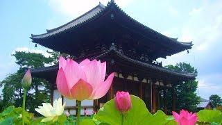 行基四十九院と言われ各地に寺院を建立した。 奈良県には行基ゆかりの寺...