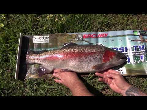 Oz Fish TV S7 E3 - Monster Goulburn River Trout