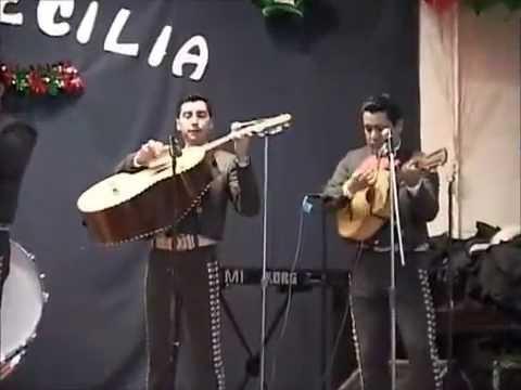 Maraichis in, Wharton NJ, El Diablo Suelto, Mariachi Nuevo Mexico, 201 993 8373 Rene