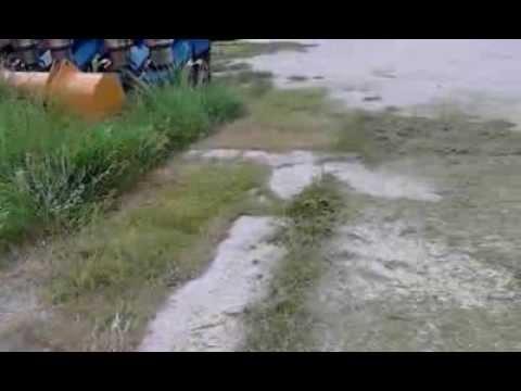 Pasto Podadora Great Dane, Modelo Chariot, En Venta