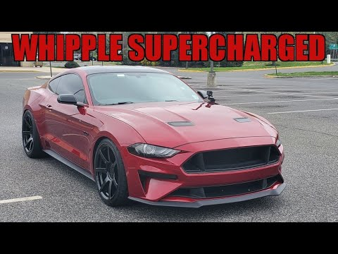 2019 Mustang GT Whipple SUPERCHARGED is RIDICULOUSLY FAST!!