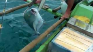 Ocean Pacific Samar Island Fishing Trip