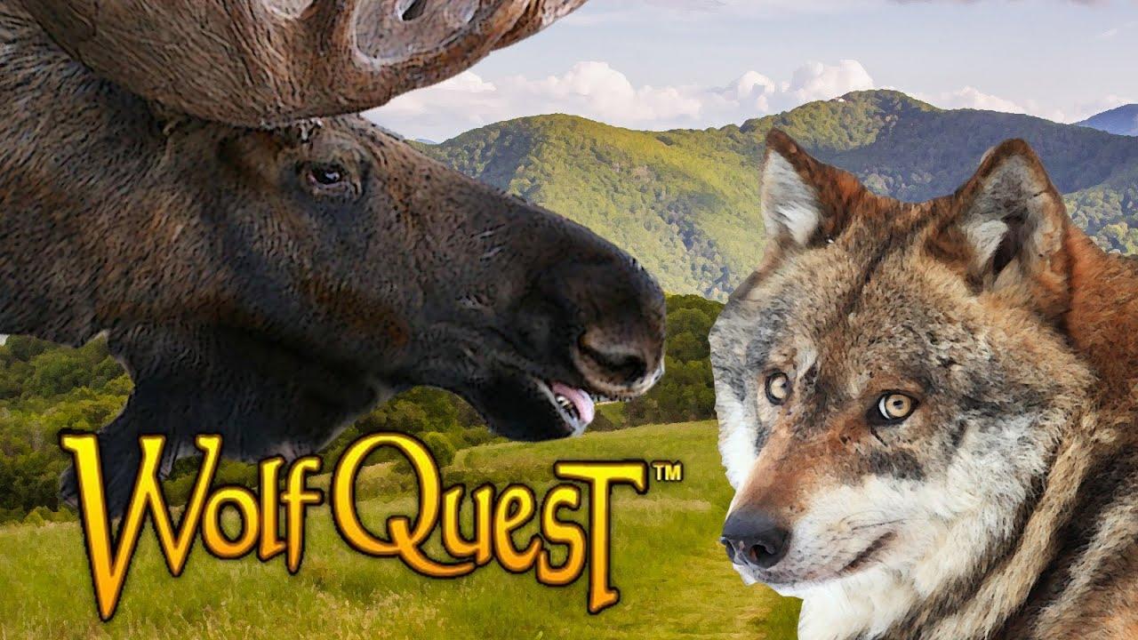 Wolf Qest