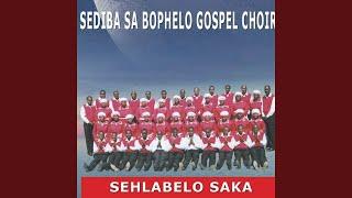 Gambar cover Sehlabelo Saka