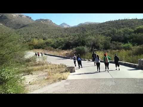 Tucson Az Sabino Canyon