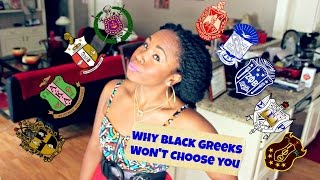 Black Greek Sororities & Fraternities || Reasons They WON