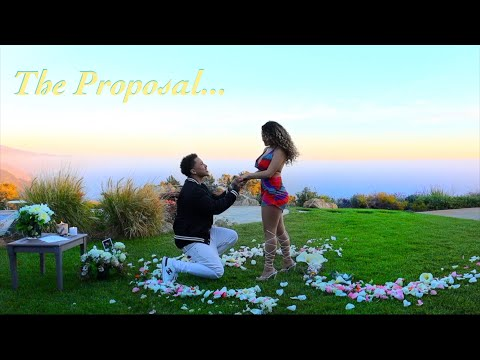 WILL YOU MARRY ME? The Proposal...
