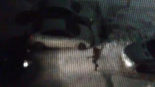 Тюменка танцевала во дворе