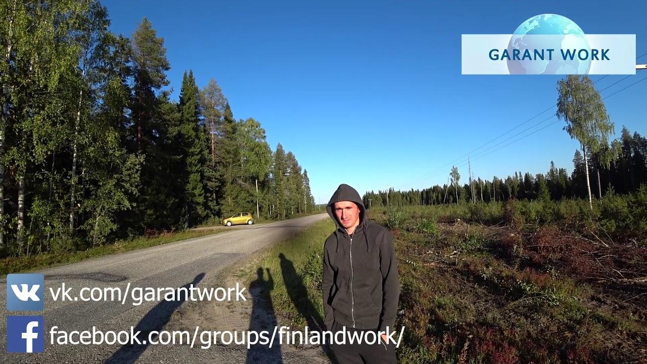 отзывы о работе в финляндии в теплицах
