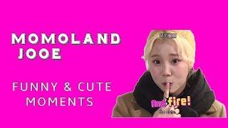 (MOMOLAND) JooE funny & cute moments