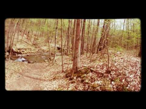 Mt. Greylock day hike